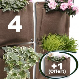 Lot de 4 Flower Pocket + 1 Offert